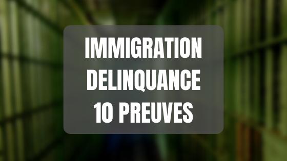 Immigration délinquance