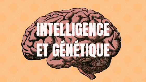 QI génétique