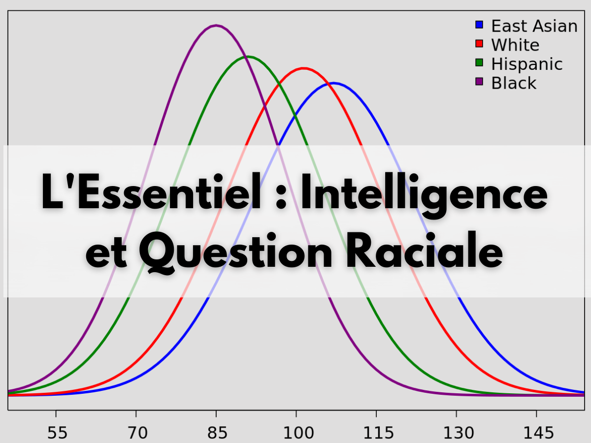 Essentiel Intelligence et Question Raciale